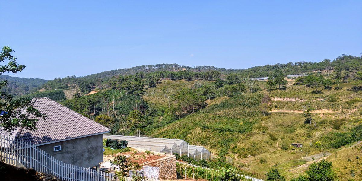 Farm on a hillside