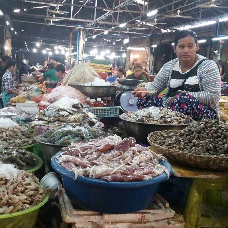 Raw seafood at market